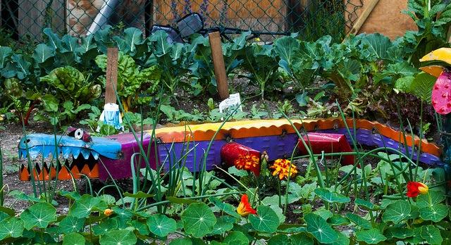 Grow Your Own Organic Garden classes