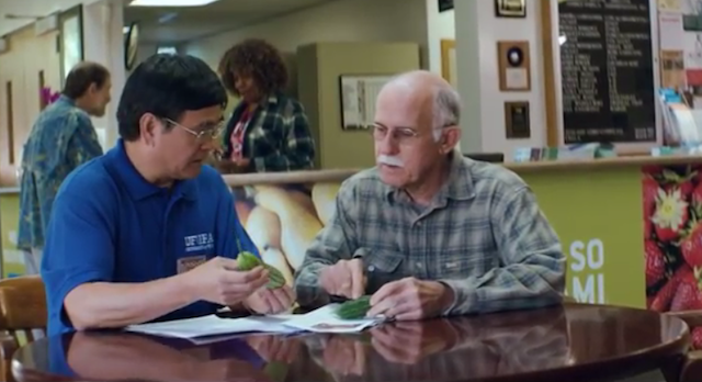 UF/IFAS video wins top ad industry award