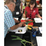 Science teachers will receive free STEM-based training and materials at the Seed to STEM summer workshops sponsored by Kansas Corn. (Courtesy of Kansas Corn)