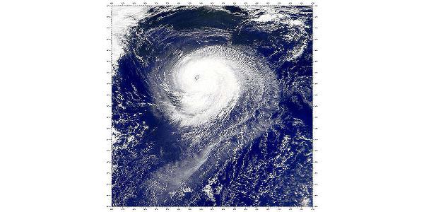 Tropical Atlantic comes alive