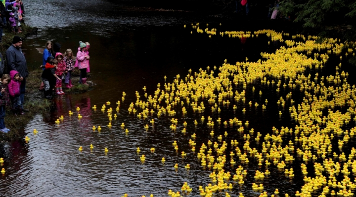AdironDuck Race in Croghan on April 29th | Morning Ag Clips