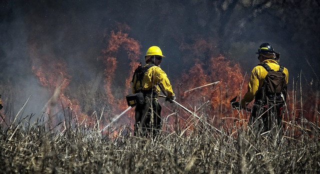Ranchers scramble for feed after wildfires
