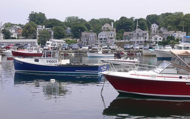 Regulators to discuss monitoring costs in northeast cod fishery