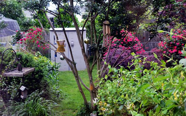 Landscape & Home Garden Pest Problem Solving
