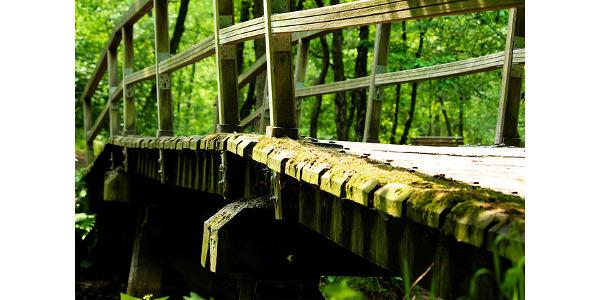 Richard Louv to visit UW-River Falls April 23