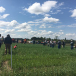 Cover Crop Field Walk at Brocks Family Dairy Farm in Carney, Michigan, spring 2018. (Photo by Monica Jean, MSU Extension)