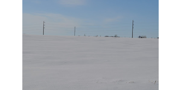Snow-covered field in Southern MN, April 19, 2018. (Photo: Liz Stahl)