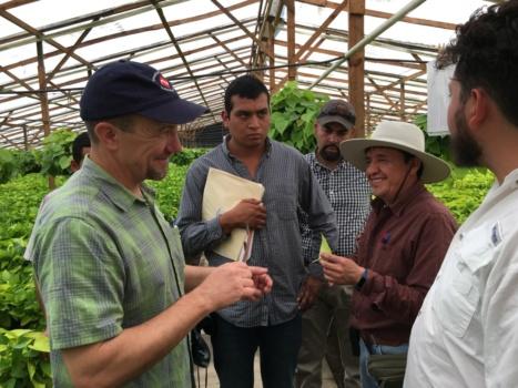 Professor shares knowledge, Guatemalans to support U.S. ornamental plants