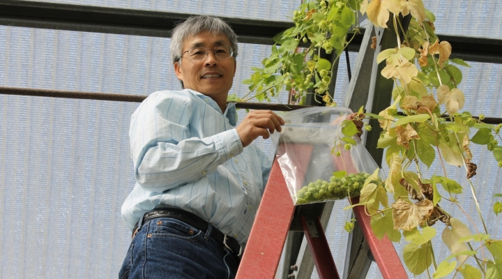 Industry donors help cultivate emerging crops