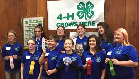 4-H youth compete in regional equine contest