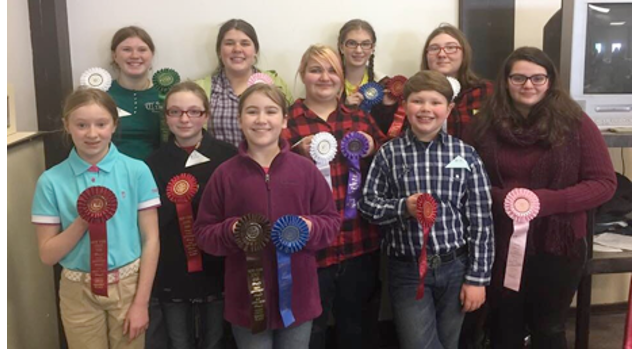 4-H members compete at state equine contest