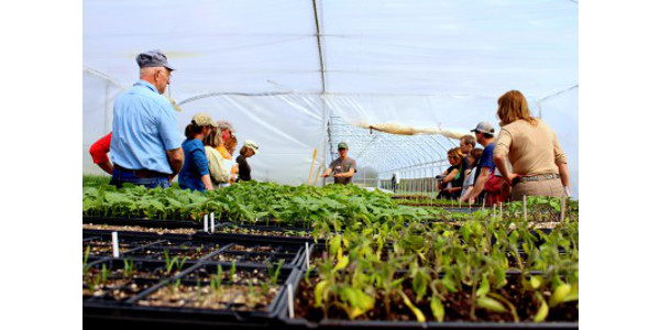 Participants learn about greenhouse management at the MSU North Farm. (Photo by Collin Thompson, Michigan State University Extension)