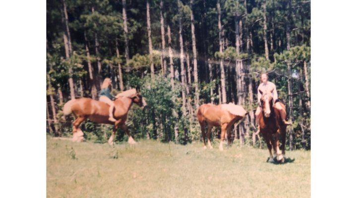 Me and Horses