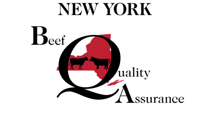 Beef Quality Assurance Training in Central NY | Morning Ag Clips