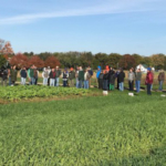 Participants tour cover crop research and demonstration plots during the Nov. 7, 2017, field day at Kellogg Biological Station. (Courtesy of MSU Extension)
