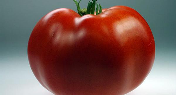 N.J.'s Ramapo tomato is 'What's In Season'
