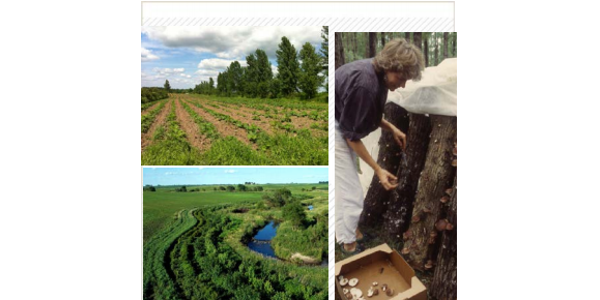 The Minnesota Agroforestry Institute is a three-day training that includes classroom workshops and on-farm visits of Agroforestry practices in the field. (Screenshot from brochure)
