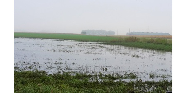 The cool, wet weather conditions experienced across Iowa this spring mean some corn and soybean fields will be planted later than normal. (Courtesy of ISU Extension and Outreach)