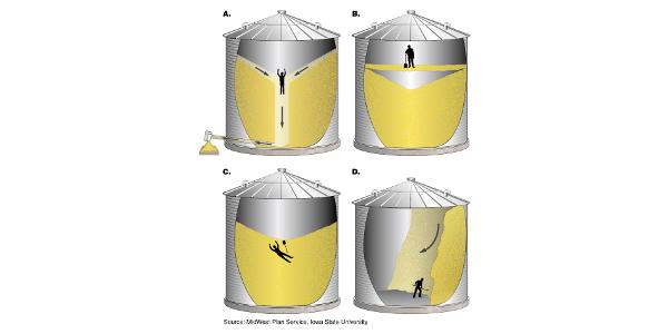 Work safely around grain