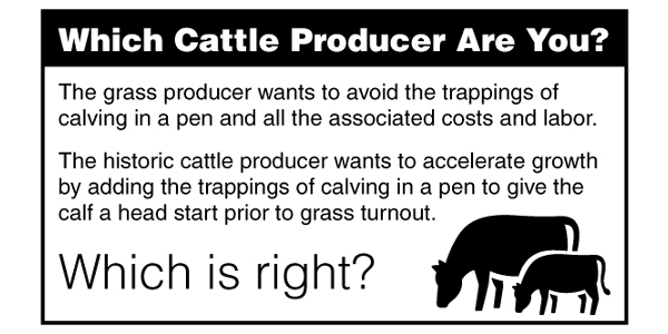 Which cattle producer are you?