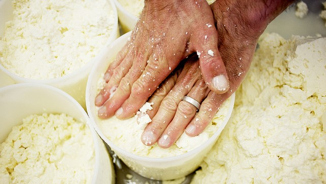 New York cheese production up 4%