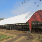 Cattle comfort and well-being within the pen environment directly impacts animal performance and health. (igrow.org)