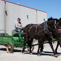 This June at the Dakota Royal Charity Draft Horse Show in Brookings, SD, when Mike Strohfus' team from  Volga, SD, enters the show ring pulling a manure spreader…memories of cleaning stalls, pitching manure and other such smelly barn tasks makes the audience 'chuckle' at their memories of hard work!