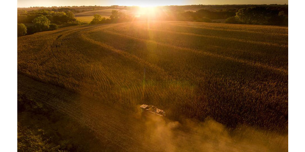 Climate effects on ag yields vary by location, crop