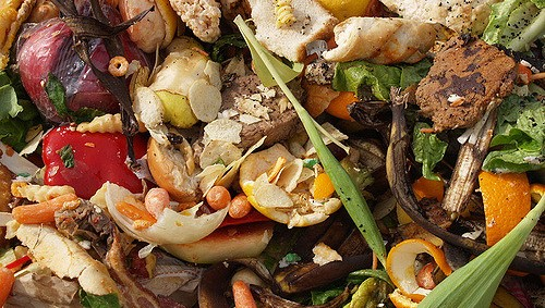 Clarkson University undertakes food waste project