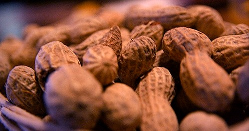 USDA scientist honored for food allergy work