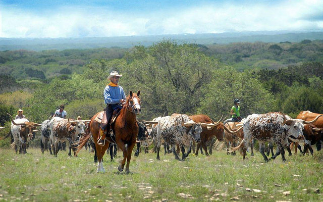 Ranch management symposium, Oct. 18-19