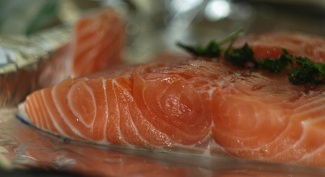Firm continues with plans for Maine salmon farm