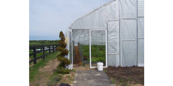 Production of cut flowers & veggies in high-tunnels