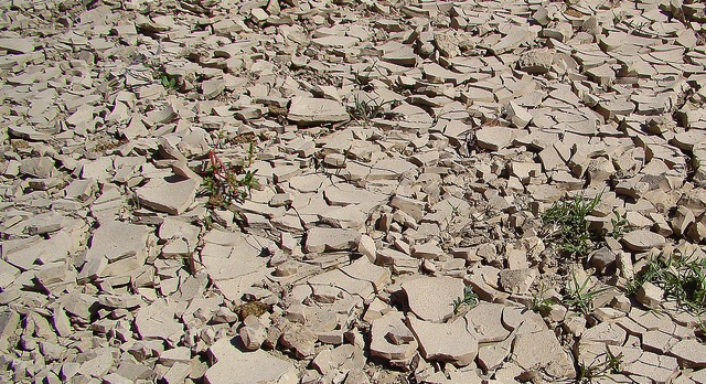 Texas drought cause for worry