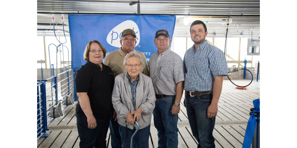Young farmer builds pig barn