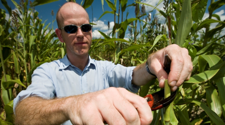 Technology may help produce less costly ethanol