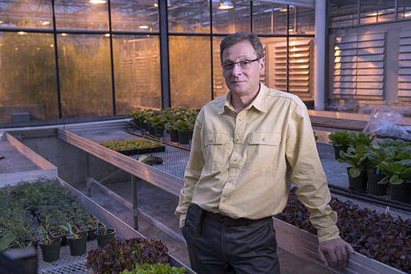 Rutgers' Raskin awarded grant for seed research