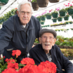 The throwback Colorado Aggie Geranium is blooming again after a collaboration between retired CSU horticulture Professors Ken Goldsberry, left, and the late Carl Jorgensen, who died May 3 at the age of 104. (Photo: John Eisele, Colorado State University)