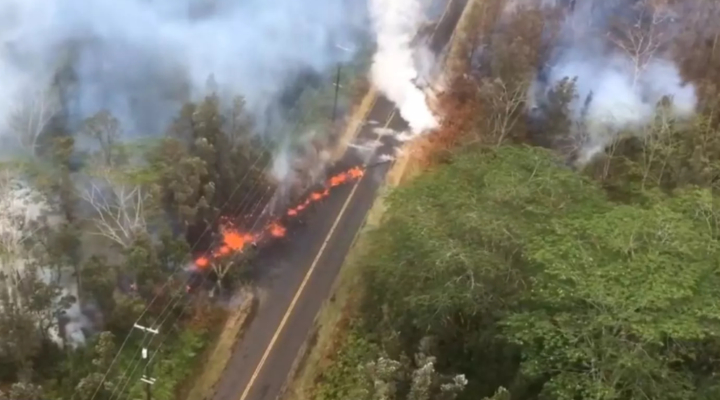 Stuck between a lava flow and a fence line, missing dogs rescued
