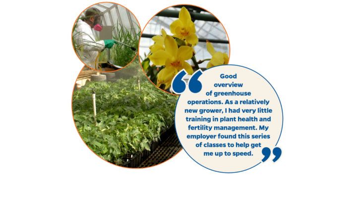 Online greenhouse courses win national award