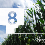 The Nebraska Corn Board is seeking applicants for its District 8 region, which includes Sioux, Dawes, Box Butte, Sheridan, Scotts Bluff, Banner, Kimball, Morrill, Cheyenne, Garden, Deuel, Cherry, Keya Paha, Brown, Rock, Grant, Hooker, Thomas, Blaine, Loup, Arthur, McPherson, Logan, Custer, Keith, Lincoln, Perkins, Chase, and Dundy counties. (Courtesy of The Nebraska Corn Board)