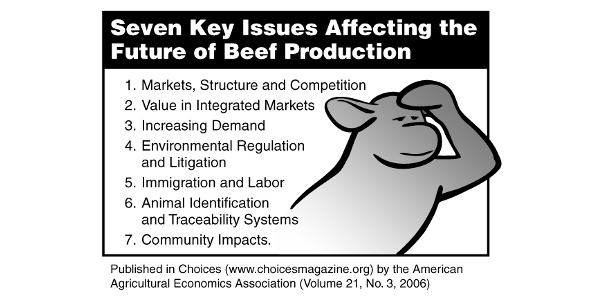 Future of beef revisited