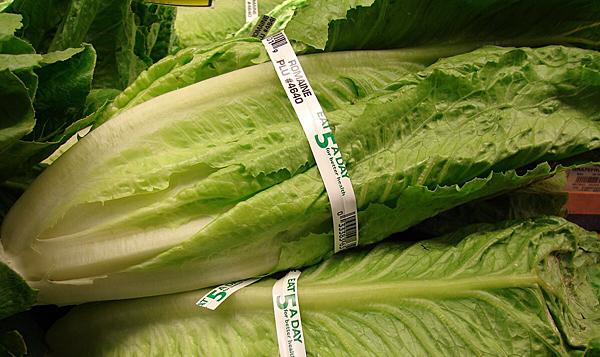 Rutgers Extension to discuss romaine lettuce