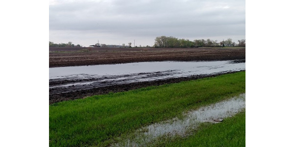 Spring came late to all of Minnesota, but for farmers in Southern Minnesota, it came with too many May showers. (Photo: Liz Stahl)