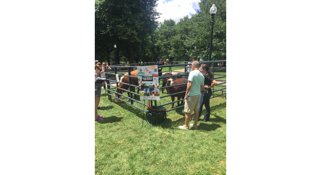 Sixth Annual Livestock on the Common