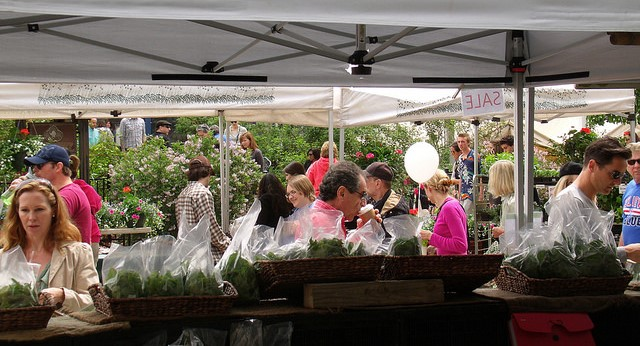 Reversing a downward trend at farmers markets