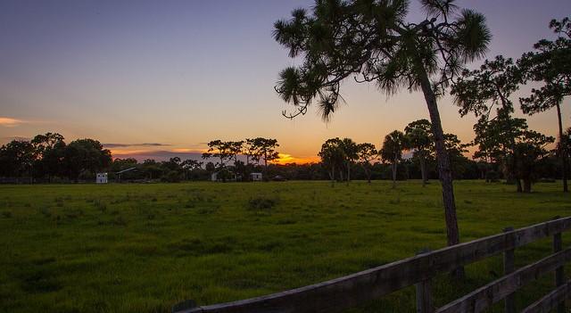 50,000+ acres preserved through program