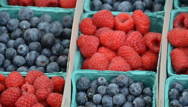 Enjoy berry season with UMaine bulletins