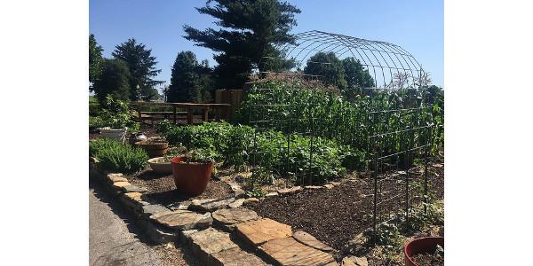 Visit Master Gardeners Of Greene County Garden Morning Ag Clips