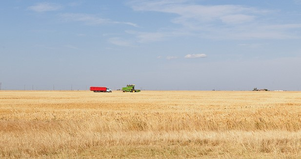 Agriculture needs a strong farm bill